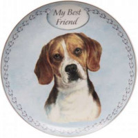 Beagle plate (my best friend)
