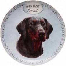 Dobermann plate (my best friend