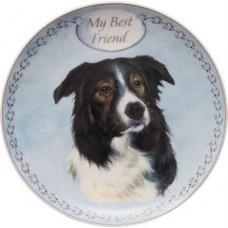 Border collie plate  (my best friend)